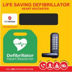 AED Armor Stainless Steel Locked Cabinet with heating